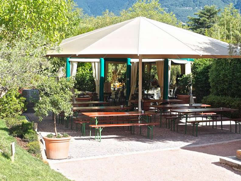 Image 2 - Falconeria Locarno