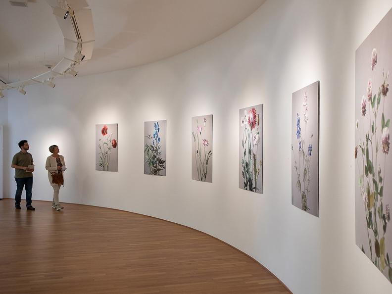 Image 5 - Museo Vincenzo Vela