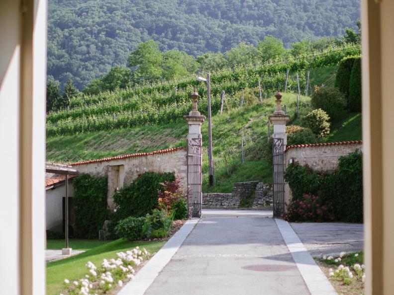 Image 1 - Villa Turconi