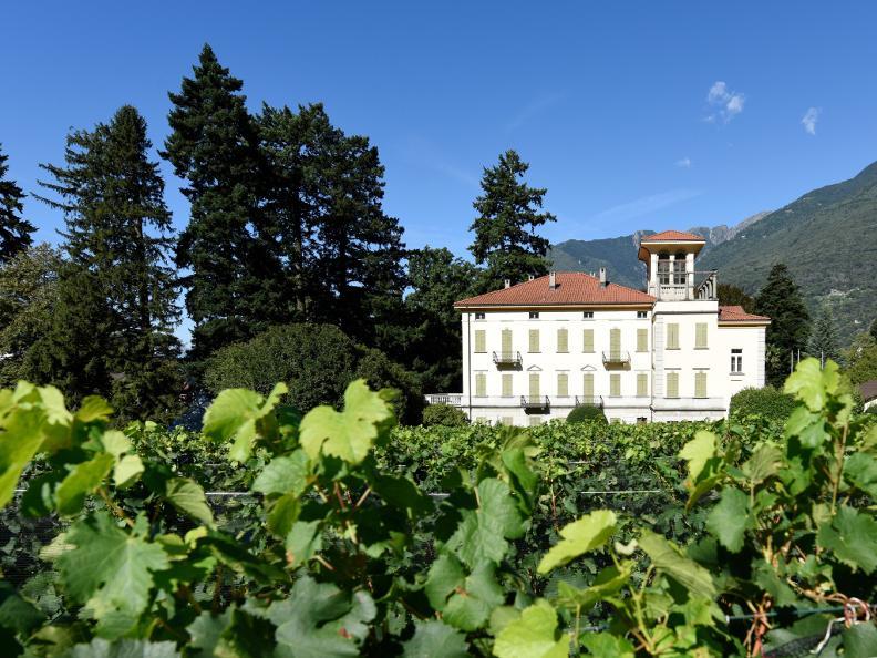 Image 5 - Villa dei Cedri