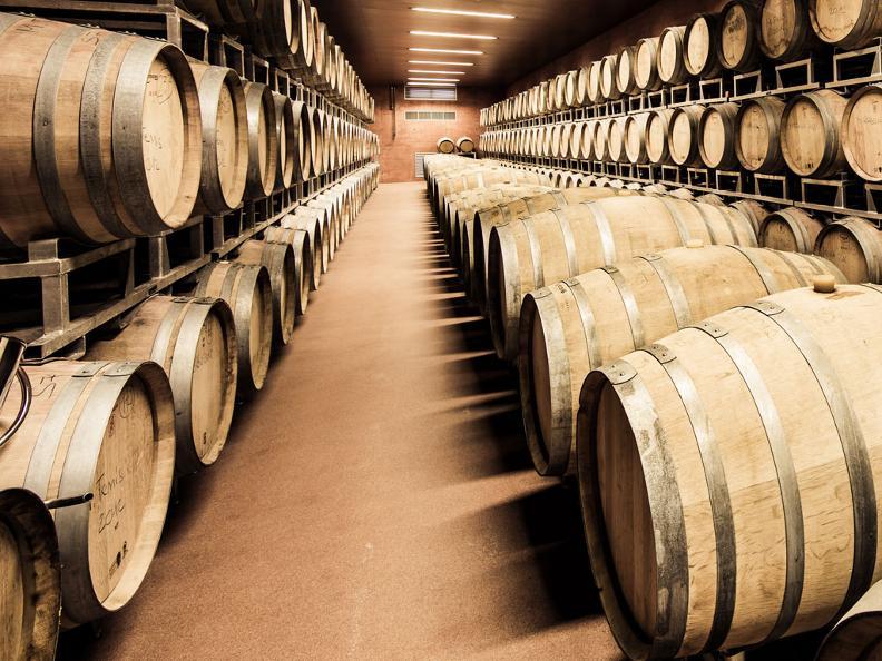 Image 1 - Winery Mendrisio, Agriloro SA