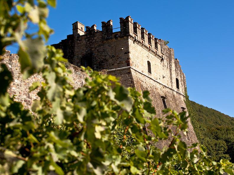 Image 0 - Tenuta Castello di Morcote