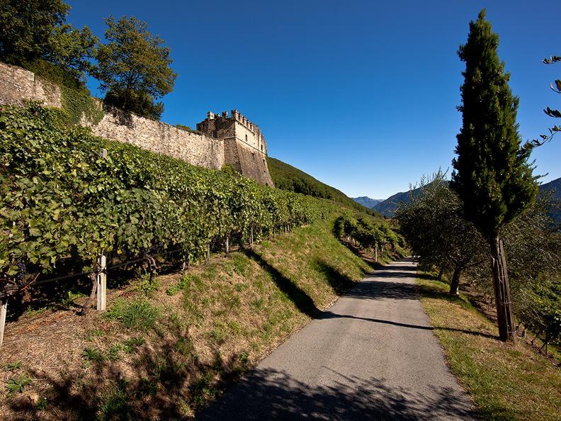 Image 2 - Tenuta Castello di Morcote