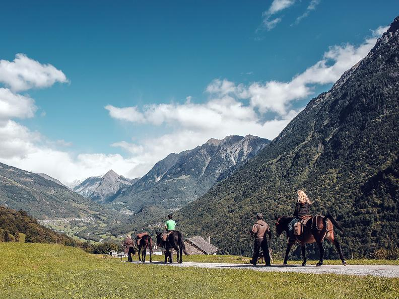 Image 2 - SOMARELLI - Trekking and adventure with animals