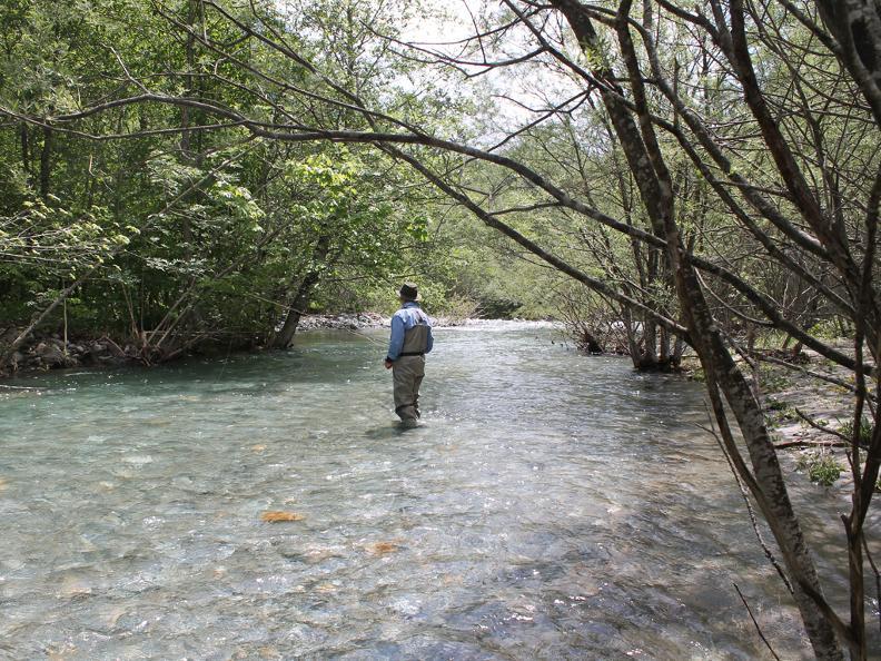 Image 2 - Ticino River Lodge - pescare con guida