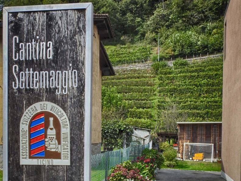 Image 0 - Wine cellar Settemaggio