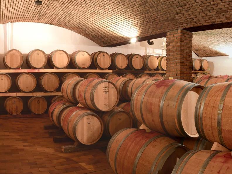 Image 5 - Cantina vinicola Tamborini Carlo eredi SA