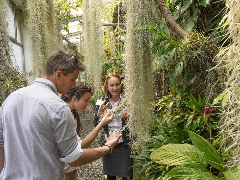 Image 1 - Brissago-Inseln - Botanischer Garten