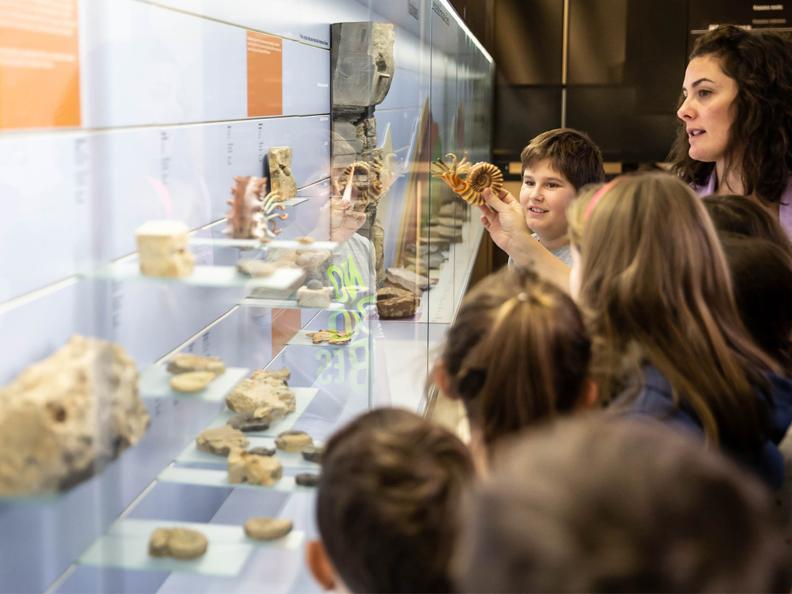 Image 1 - Fossilienmuseum Monte San Giorgio
