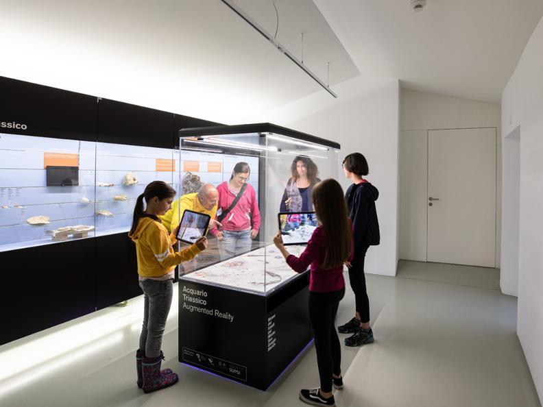 Image 2 - Fossilienmuseum Monte San Giorgio