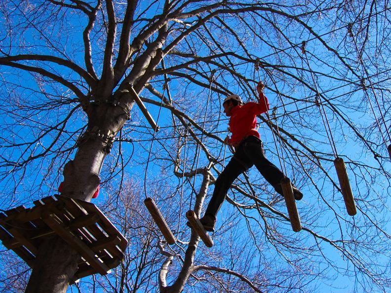 Image 2 - Adventure park Monte Tamaro