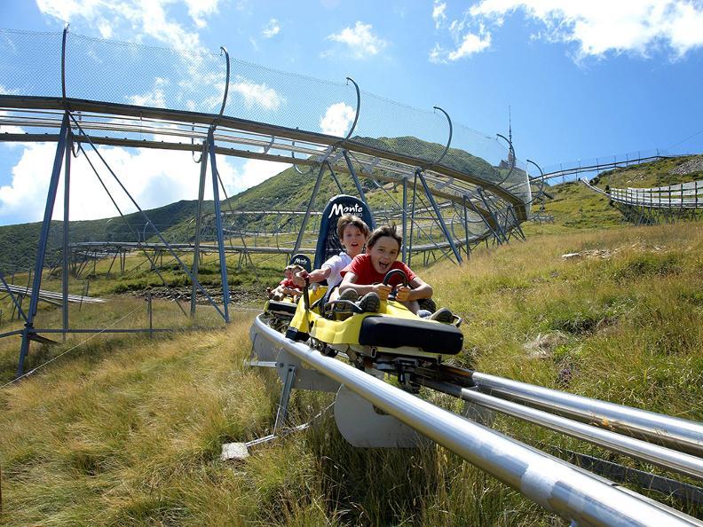 Image 2 - Alpine Coaster Bob Tamaro