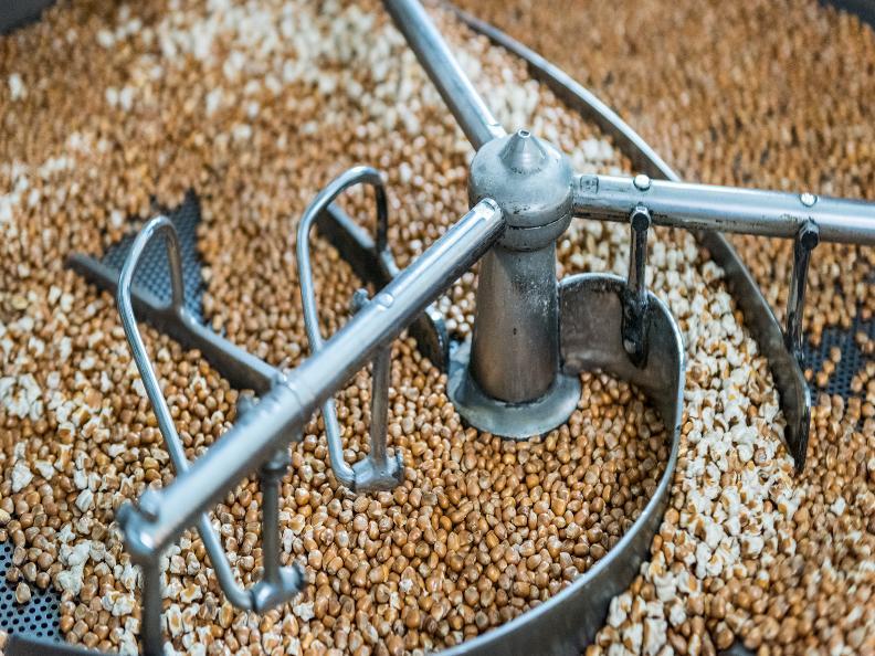 Image 3 - Visita guidata dei mulini della farina bóna