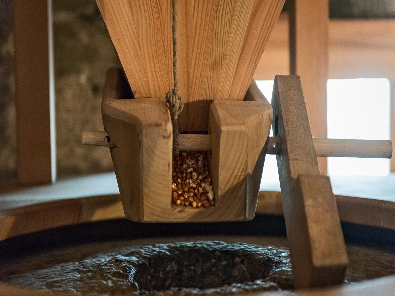 Image 2 - Visita guidata dei mulini della farina bóna