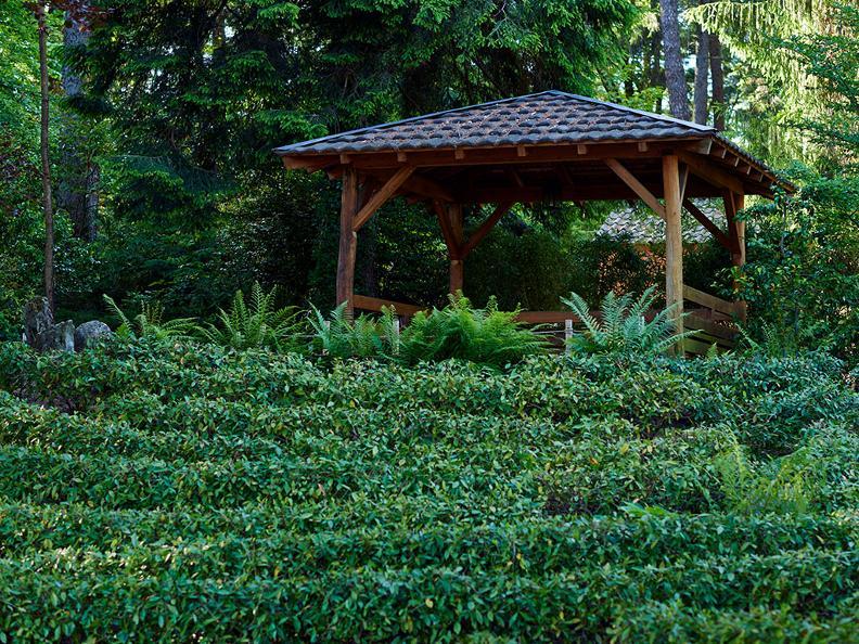 Image 2 - Piantagione e Casa del tè con cerimonia