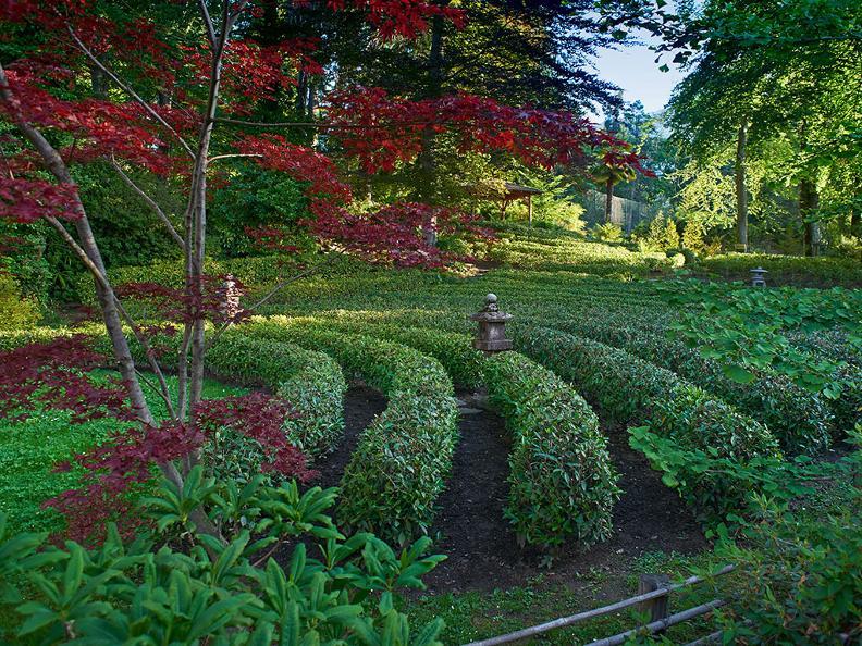 Image 3 - Piantagione e Casa del tè con cerimonia